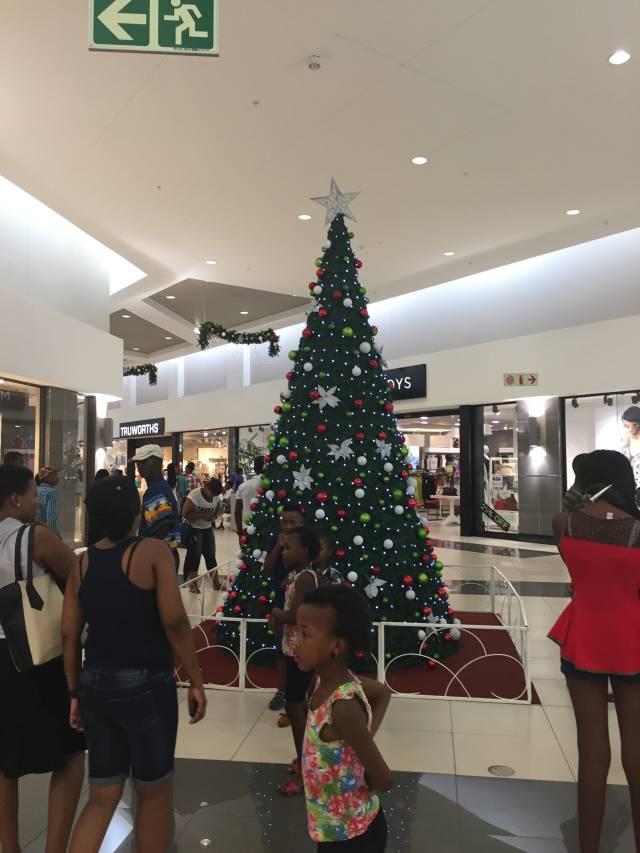 6-6-weihnachtsbaum